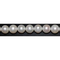 Perla 11 mm.(Alta calidad +)