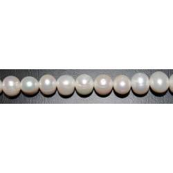 Perla esférica 11-12 mm.(Alta calidad)